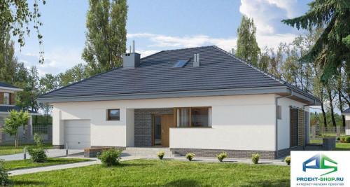 Типовой проект жилого дома E111