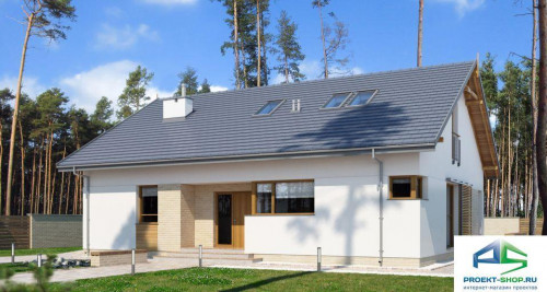 Типовой проект жилого дома E173