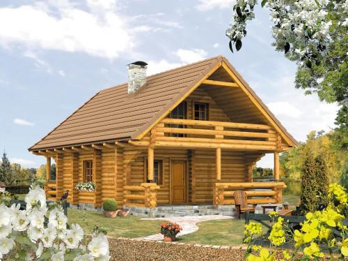 Типовой проект жилого дома 1-335