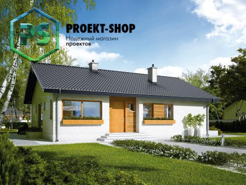 Типовой проект жилого дома 4-1103