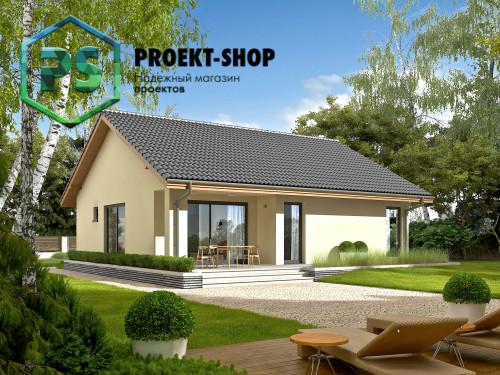 Типовой проект жилого дома 4-2460