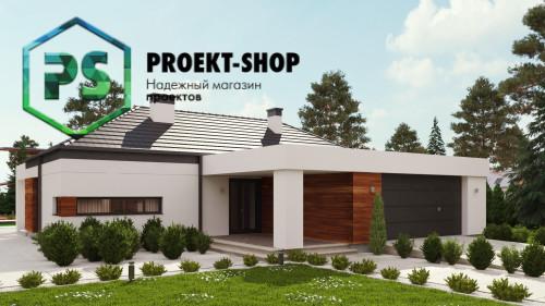 Проект 4-2843
