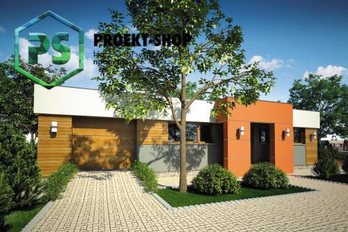 Типовой проект жилого дома 4-2909
