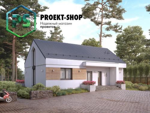 Проект 4-461