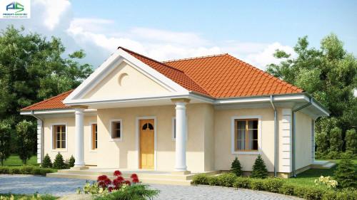Проект одноэтажного дома z2