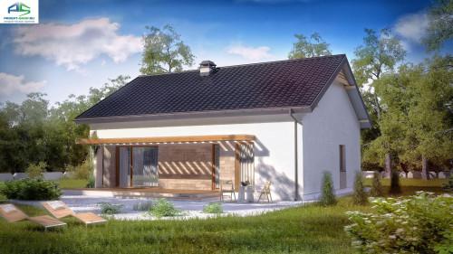 Типовой проект жилого дома z261