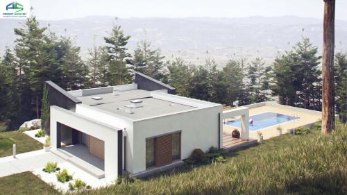 Типовой проект жилого дома zx106