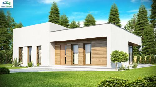 Типовой проект жилого дома zx35